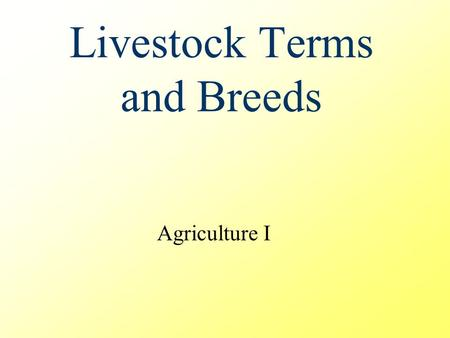 Livestock Terms and Breeds Agriculture I. General Livestock Terms Barren – not capable of producing offspring Cull – to eliminate one or more animals.