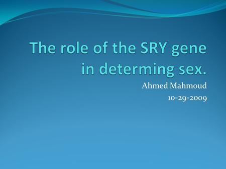 The role of the SRY gene in determing sex.