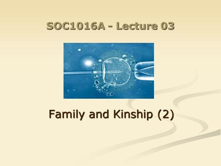 SOC1016A - Lecture 03 Family and Kinship (2). Last week: Kinship as part of a culture Kinship as part of a culture Kinship as a social institution Kinship.