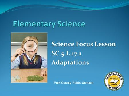 Science Focus Lesson SC.5.L.17.1 Adaptations Polk County Public Schools.