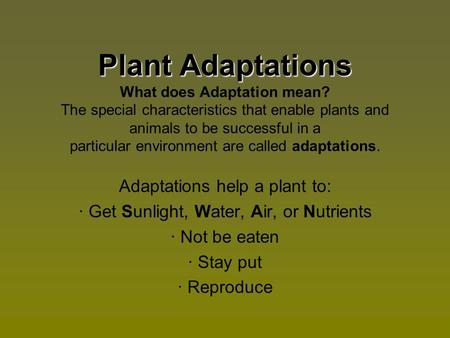 Plant Adaptations What does Adaptation mean