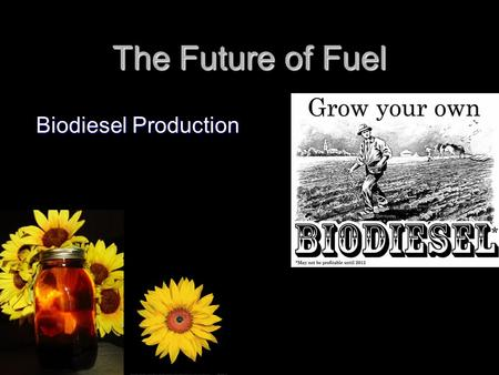 The Future of Fuel Biodiesel Production. What is Biodiesel? Biodiesel is a fuel for conventional Diesel engines made from plant or animal oils that have.