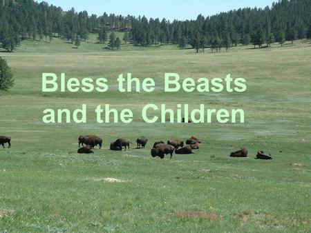 Bless the Beasts and the Children
