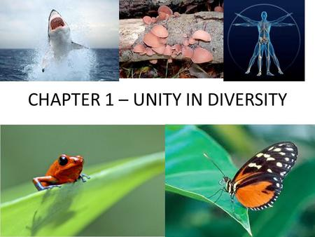 CHAPTER 1 – UNITY IN DIVERSITY UNITY IN DIVERSITY MARS VS EARTH (WHAT'S THE BIG DEAL?!?)