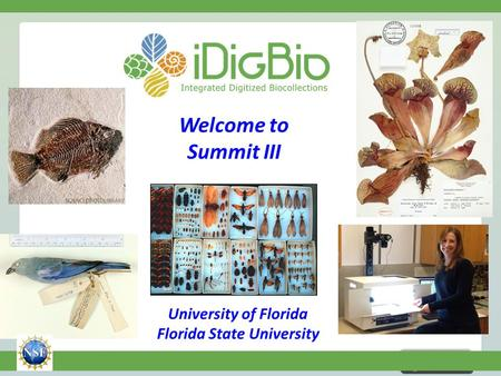 NSF EF-1115210 Welcome to Summit III University of Florida Florida State University.