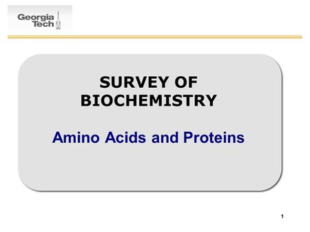 1 SURVEY OF BIOCHEMISTRY Amino Acids and Proteins.