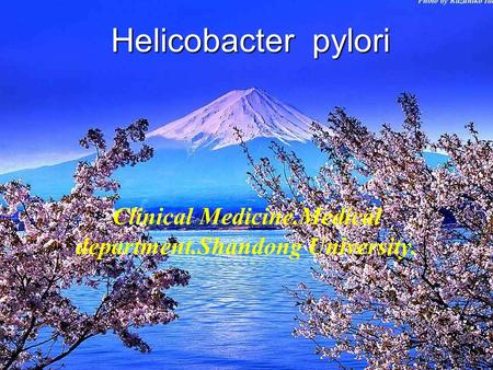 Helicobacter pylori Clinical Medicine.Medical department.Shandong University.