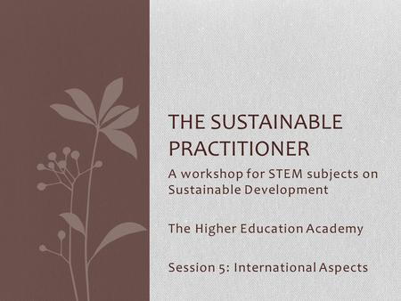 THE SUSTAINABLE PRACTITIONER A workshop for STEM subjects on Sustainable Development The Higher Education Academy Session 5: International Aspects.