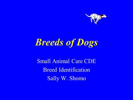 Breeds of Dogs Small Animal Care CDE Breed Identification Sally W. Shomo.