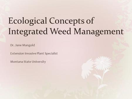 Ecological Concepts of Integrated Weed Management Dr. Jane Mangold Extension Invasive Plant Specialist Montana State University.