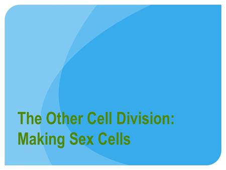 The Other Cell Division: Making Sex Cells