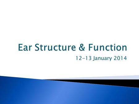 Ear Structure & Function