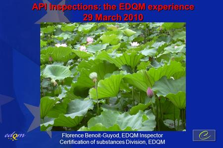 API Inspections: the EDQM experience 29 March 2010 Florence Benoit-Guyod, EDQM Inspector Certification of substances Division, EDQM.