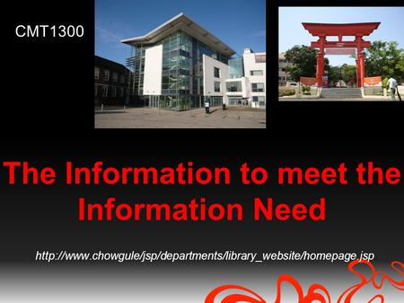 The Information to meet the Information Need  CMT1300.