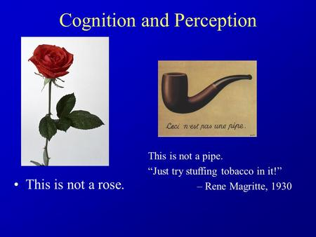 "Cognition and Perception This is not a rose. This is not a pipe. ""Just try stuffing tobacco in it!"" – Rene Magritte, 1930."
