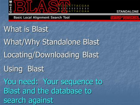 What is Blast What/Why Standalone Blast Locating/Downloading Blast Using Blast You need: Your sequence to Blast and the database to search against.