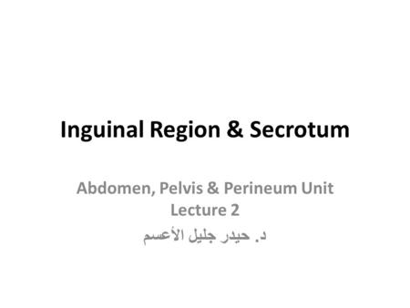 Inguinal Region & Secrotum
