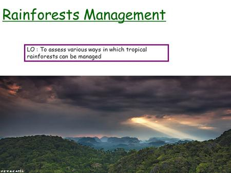 Rainforests Management LO : To assess various ways in which tropical rainforests can be managed.