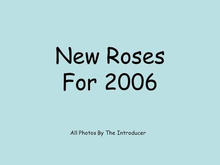 New Roses For 2006 All Photos By The Introducer. An American Rose Society Presentation - ©2006.