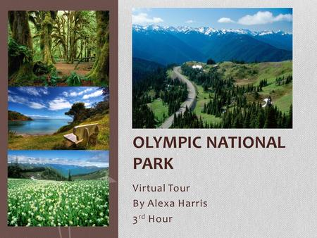 Virtual Tour By Alexa Harris 3 rd Hour OLYMPIC NATIONAL PARK.