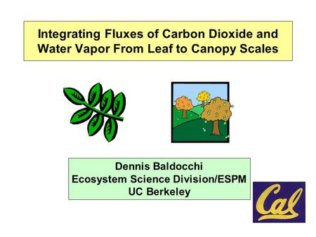 Integrating Fluxes of Carbon Dioxide and Water Vapor From Leaf to Canopy Scales Dennis Baldocchi Ecosystem Science Division/ESPM UC Berkeley.
