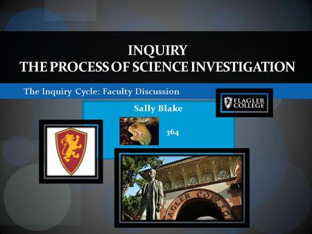 The Inquiry Cycle: Faculty Discussion INQUIRY THE PROCESS OF SCIENCE INVESTIGATION Sally Blake 364.