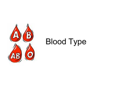 Blood Type.
