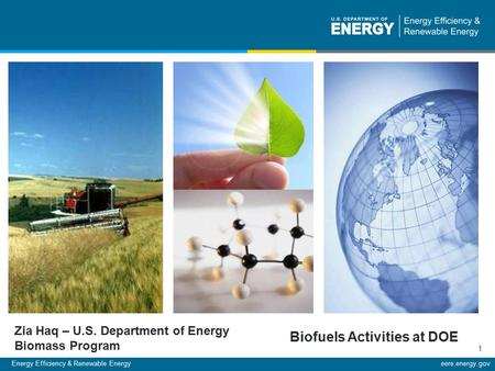 Energy Efficiency & Renewable Energyeere.energy.gov 1 Zia Haq – U.S. Department of Energy Biomass Program Biofuels Activities at DOE.