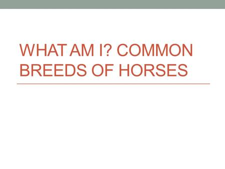 WHAT AM I? COMMON BREEDS OF HORSES. Last Lesson Talked about uses of horses: Who can tell me what is one of the main things we use horses for? What is.