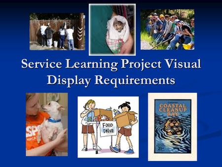 Service Learning Project Visual Display Requirements.