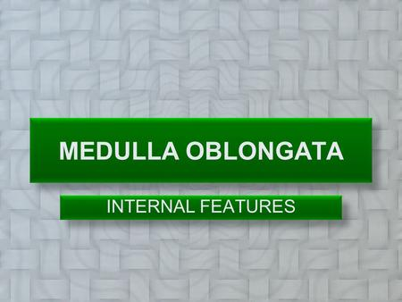 MEDULLA OBLONGATA INTERNAL FEATURES.