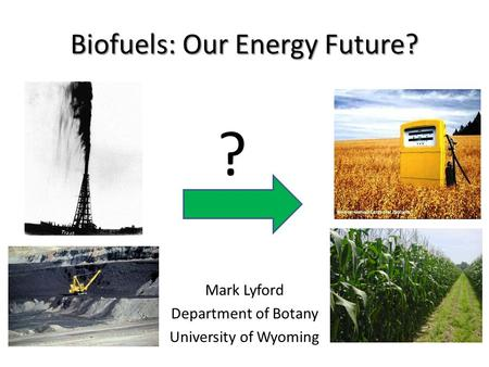 Biofuels: Our Energy Future? Mark Lyford Department of Botany University of Wyoming ?
