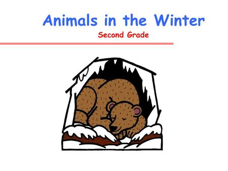 Animals in the Winter Second Grade What do animals do during the winter?