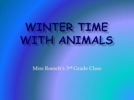 Miss Roesch's 3 rd Grade Class.  To adapt means to change in order to survive.  During the cold winter season, animals, like people must adapt to their.