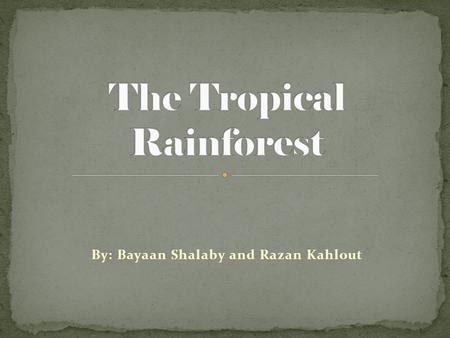 By: Bayaan Shalaby and Razan Kahlout. The largest rainforest in the world is the Amazon Rainforest. Tropical Rainforests are located in Africa, Asia,