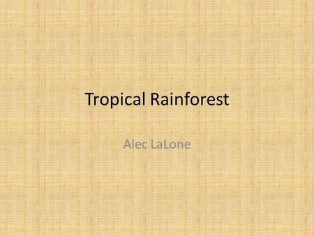 Tropical Rainforest Alec LaLone. What is a tropical rainforest??? Well, a tropical rainforest is a forest of tall trees in a region of year-round warmth.
