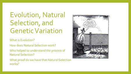 Evolution, Natural Selection, and Genetic Variation What is Evolution? How does Natural Selection work? Who helped to understand the process of Natural.
