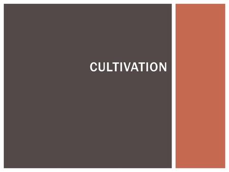 CULTIVATION.  Reduce compaction  Reduce thatch  Smooth surface REASONS TO CULTIVATE TURF.