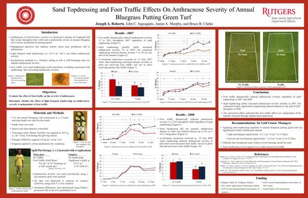 Sand Topdressing and Foot Traffic Effects On Anthracnose Severity of Annual Bluegrass Putting Green Turf Joseph A. Roberts, John C. Inguagiato, James A.