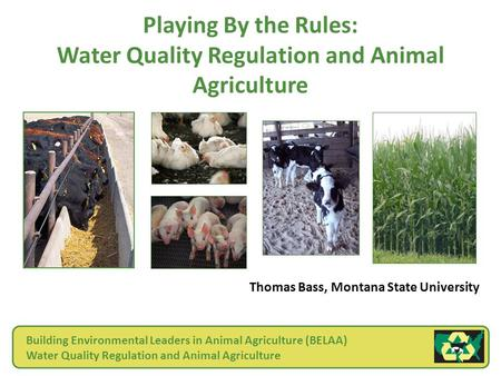 Playing By the Rules: Water Quality Regulation and Animal Agriculture Thomas Bass, Montana State University Building Environmental Leaders in Animal Agriculture.