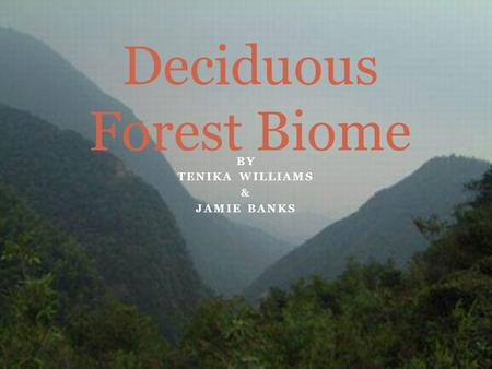 BY TENIKA WILLIAMS & JAMIE BANKS Deciduous Forest Biome.