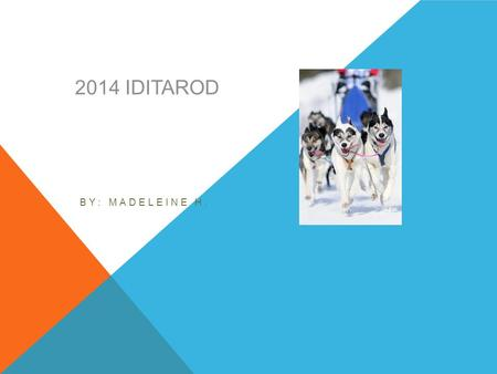 2014 IDITAROD BY: MADELEINE H. INTRODUCTION The Iditarod is a sled dog race. The dogs pull a sled from Anchorage, Alaska to Nome, Alaska. The dog's owners.