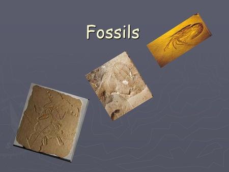 Fossils. What is a fossil ► A fossil is the remains of a living organism. ► Includes bones, teeth, hair or shells ► Can also include impressions, molds.