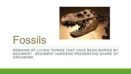Fossils REMAINS OF LIVING THINGS THAT HAVE BEEN BURIED BY SEDIMENT. SEDIMENT HARDENS PRESERVING SHAPE OF ORGANISM.