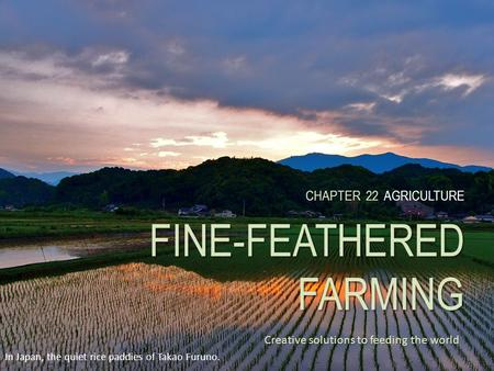 CHAPTER 22 FINE-FEATHERED FARMING CHAPTER 22 AGRICULTURE FINE-FEATHERED FARMING Creative solutions to feeding the world In Japan, the quiet rice paddies.