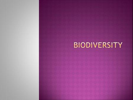  All living things are called organisms.  Biodiversity is the short form of Biological Diversity.  Biodiversity refers to the wide variety of organisms.