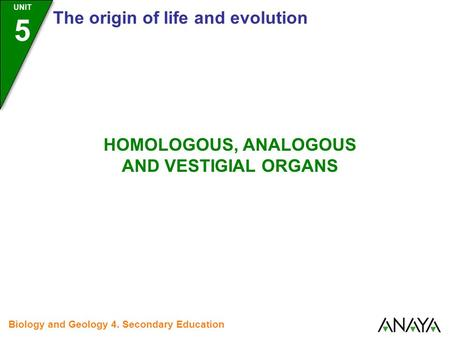 UNIT 5 The origin of life and evolution Biology and Geology 4. Secondary Education HOMOLOGOUS, ANALOGOUS AND VESTIGIAL ORGANS.