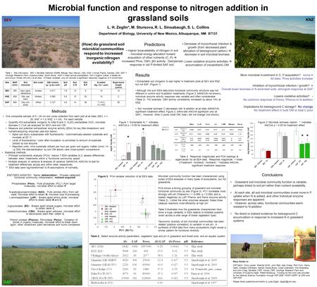 Microbial function and response to nitrogen addition in grassland soils L. H. Zeglin*, M. Stursova, R. L. Sinsabaugh, S. L. Collins Department of Biology,