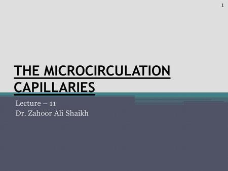 THE MICROCIRCULATION CAPILLARIES