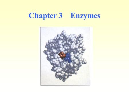 Chapter 3 Enzymes. Almost all processes in the living cell are catalyzed by the <strong>specific</strong> biocatalyst. Enzymes are catalysts that change the rate of a.